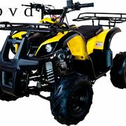 Avantis Hunter 7 Lite 50cc