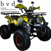 Avantis Hunter 8 50cc